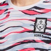 Increíble Camiseta Pre – Partido Nike Corea Del Sur 2020